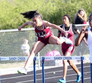 Track and field stars shine at county championship