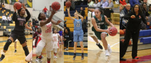 Introducing the 2019 All-County Girls Basketball Team