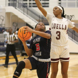 Lady Patriots fall to Luella in Elite Eight