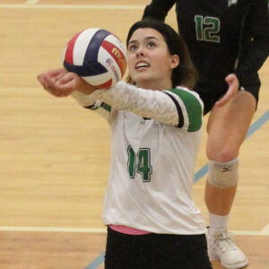 McIntosh fends off fierce challenge from Starr's Mill