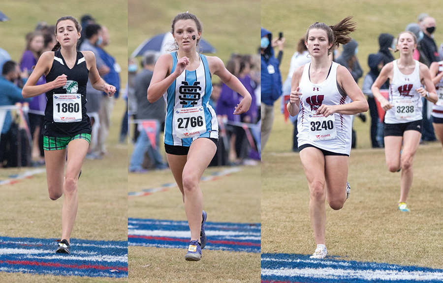 Local runners compete at state cross country meet